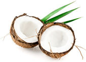 Coconut with leaves closeup — Stock Photo