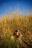 嬉皮女孩在草. — 图库照片