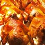 Tray of roast chicken — Stock Photo