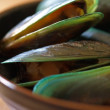 Green mussels - Stock Photo