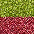 Stock Photo: Red and green mung beans