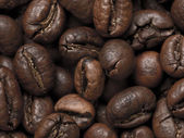 Peabody coffee beans — Stock Photo