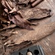 Stock Photo: Manufacture of cigars in cigar factory