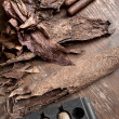 Manufacture of cigars in the cigar factory — Stock Photo