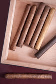 A few cigars in a box — Stock Photo