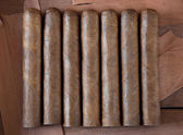 Seven cigars on a brown background — Stock Photo
