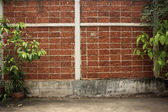 Red brick wall with green plants — Stok fotoğraf