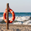 Stock Photo: Lifebuoy in Mediterranean