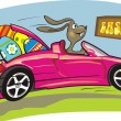 Stock Vector: Crazy easter bunny and his pink car