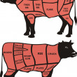 Cuts of beef - american and british - Vektorgrafik
