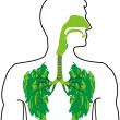 Green lung - a breath of fresh air — Stock Vector