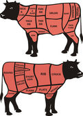 Cuts of beef - american and british — Stock Vector