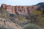Charyn Canyon near the city of Almaty, Kazakhstan — Stock Photo