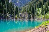 Kaindy Lake in Kazakhstan — Stock Photo