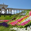 Stock Photo: Bed of flowers in Almaty