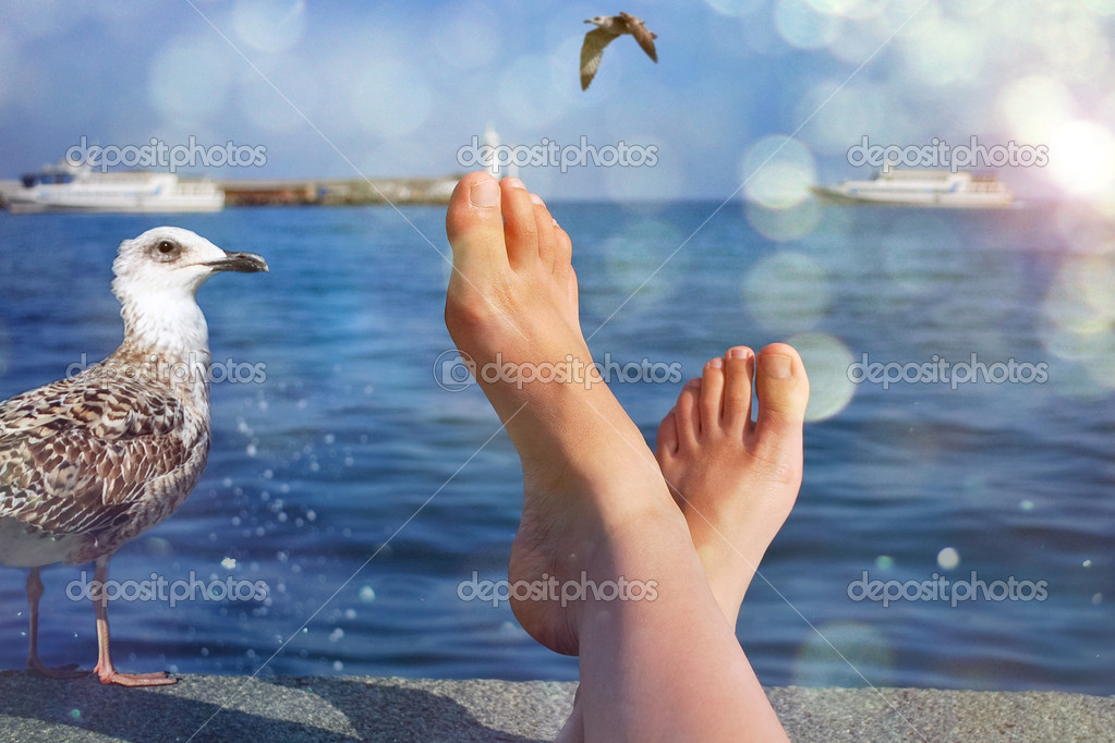 Female legs and seagull on seaside background — Stock Photo #5950945