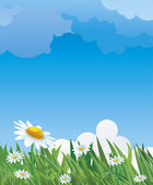 Summer Meadow. — Stock Vector