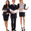 The business team — Stock Photo #5843930