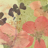 Art vintage floral background — Stock Photo