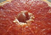 Cut red grapefruit — Stock Photo