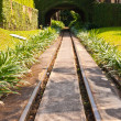 Railway in green park — Stock Photo