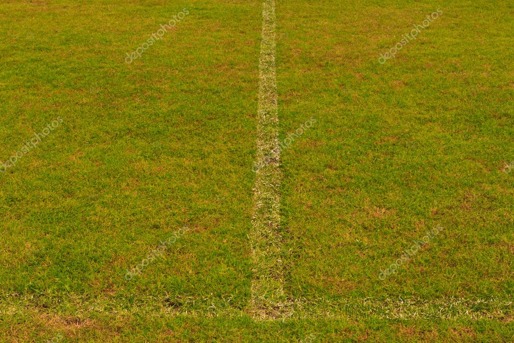 Green grass field with white line for game — Стоковая фотография #6377558