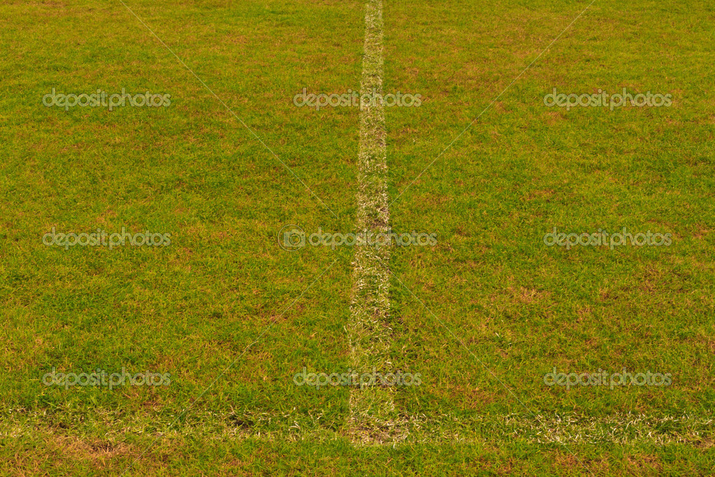 Green grass field with white line for game — Stok fotoğraf #6377558
