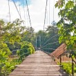Wooden suspension bridge - Stock Photo