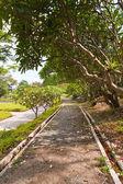 Poco senso di curva a piedi nel parco — Foto Stock
