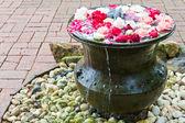 Variuos färg rosor i skål — Stockfoto