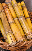 Sugarcane in basket — Stock Photo