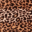 Leopard pattern carpet — Stock Photo