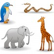 Animals: penguin, giraffe, snake, elephant — Stock Vector
