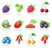 Berries icon set. — Stock Vector