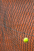 The tennis ball has got stuck in a metal grid — Stock Photo