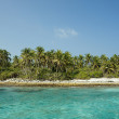 Stock Photo: Tropical beach landscape.