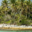Tropical beach landscape. — Stock Photo