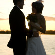 Silhouette of Newlyweds looking at eachother lovingly — Stock Photo