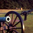 Stock Photo: Manassas Valley Cannon