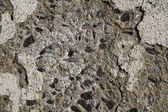 Chipped Concrete Texture — Stock Photo