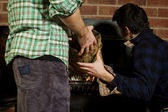 Man giving his friend a log — Stock Photo