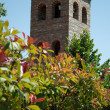 Stockfoto: Tower behind trees