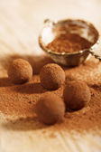 Chocolate truffles cocoa powder dusted and sieve, shallow dof — Stock Photo