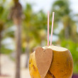 Drinking coconut with cocktail straws and paper heart — Stock Photo #5612610