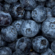 Blueberry watered  background - Stock Photo