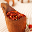 Red chillies paper flakes in curved wooden bowl and camel carava — Stock Photo #5616823