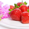 Strawberry on a plate decorated with malva flowers — Stock Photo