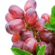 Closeup shot of red grapes - Stock Photo