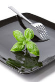 Summer diet: basil leaves on a black plate — Stock Photo