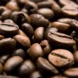 Coffee Bean — Stock Photo #5669074